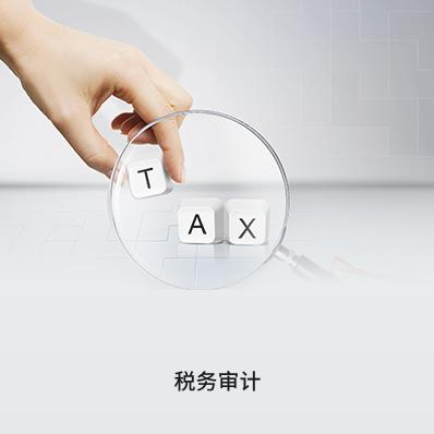 税务审计(100万元以下 ) - 企常青