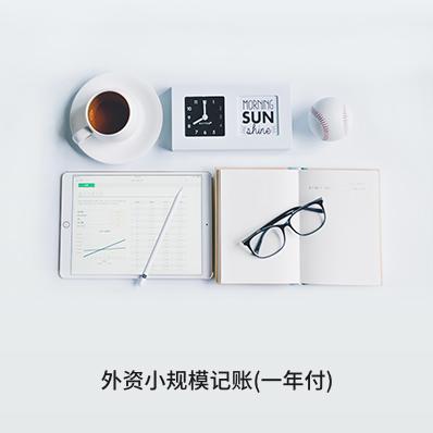 外资小规模记账(一年付) - 企常青